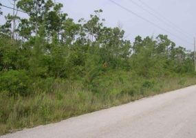 LOT 14, S.C. BOOTLE HWY., ,Lots/acreage,For Sale,LOT 14, S.C. BOOTLE HWY.,27017