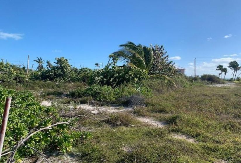 LOT 30, BLK 203, TCB, ,Lots/acreage,For Sale,LOT 30, BLK 203, TCB,43579