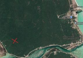 SOUTH ANDROS 323 ACRE, ,Lots/acreage,For Sale,SOUTH ANDROS 323 ACRE,43682
