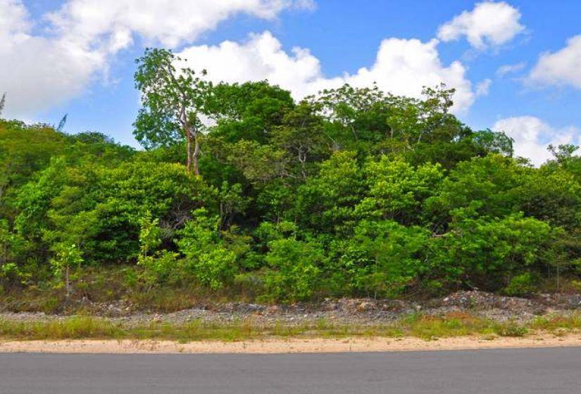 OAKRIDGE ROAD, ,Lots/acreage,For Sale,OAKRIDGE ROAD,25065