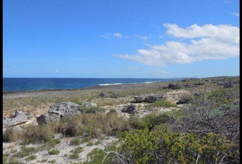 ELEUTHERA- OCEAN PROPERTY, ,Lots/acreage,For Sale,ELEUTHERA- OCEAN PROPERTY,44266