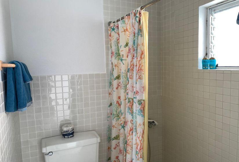 Guest Bedroom 1 Shower